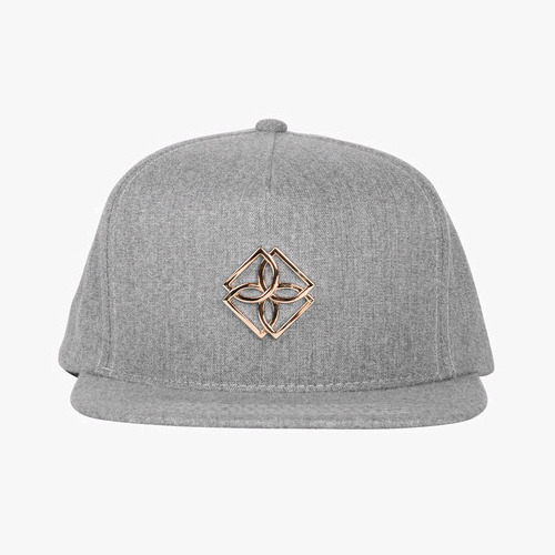 DOPE Gold Monogram Snapback (Grey)