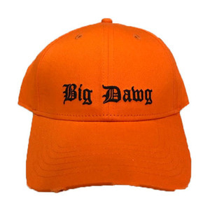 FNTY Bog dawg cap - ORANGE