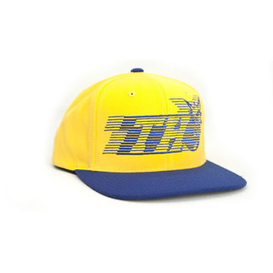 THE HUNDREDS Blinds Snap Back HAT [2]