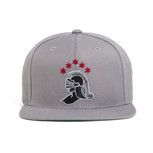 BLACK SCALE Knight Logo Snap Back, Grey