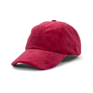 THE HUNDREDS STEELO DAD HAT RED